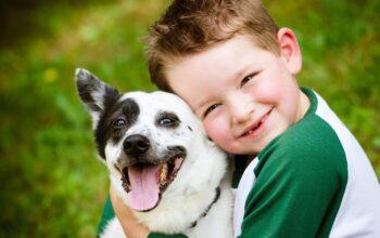 да-научим-децата-си-на-грижовност-куче